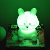 LED PVC Rabbit images